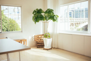 掃除を習慣化した部屋のイメージ